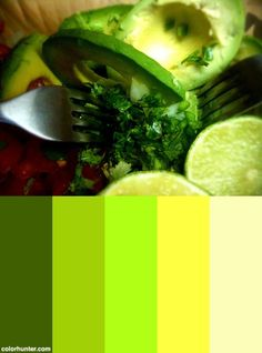 Making Guacamole Color Scheme