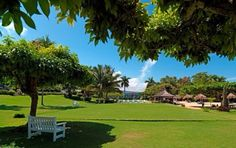 The croquet lawn (VERY English). Ochos Rios.