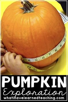 We started our measurement unit this Fall by measuring the attributes of pumpkins.  Students had fun working with their team to explore their pumpkins AND this pumpkin activity made a great introduction to measurement. Get a FREE copy of the student sheets for this pumpkin exploration! #pumpkins #fall #measurement #secondgrademath #pumpkinexploration #pumpkinmeasurement