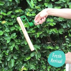 A plastic free mop head that fits to almost any threaded handle! It takes just a second to attach a cloth and is perfect for reaching those hard to reach places. Green Cleaning Recipes, Mop Heads, Cost Of Goods, Biomes, Order Up, Red Oak, Handle, Plastic, Places