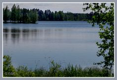 Palokka paikassa Jyväskylä, Länsi-Suomen Lääni
