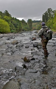 Looking forward to heavy rain - GFFpix - share your best flyfishing pictures - Global FlyFisher