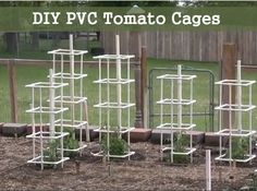 How To Build PVC Tomato Cages - Stronger more durable support for your tomato plants.                                                                                                                                                      More