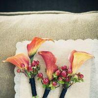 kala lilly autumn inspired