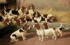 Basset Hounds in a Kennel by VT Garland (oil on canvas)