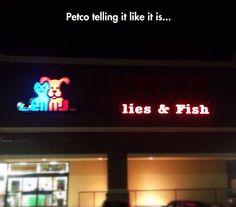 Petco's New Slogan