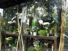 Paris, France. Flower shop window display