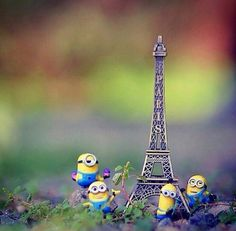 Minions in paris uploaded by knutselz_frutselz Cool Pictures For Wallpaper, Cute Disney Wallpaper, Cute Cartoon Wallpapers, Cartoon Pics, Wallpaper Pc, Cute Wallpaper Backgrounds, Colorful Wallpaper, Miniature Photography, Cute Photography