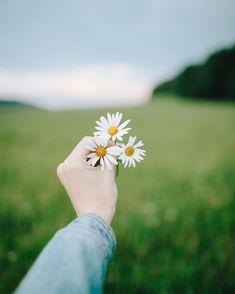 Happy weekend my dear friends … – All Pictures Hand Flowers, Beautiful Flowers, Pretty Photos, Beautiful Pictures, Hand Photography, Profile Photography, Flower Aesthetic, Aesthetic Art, Foto Art
