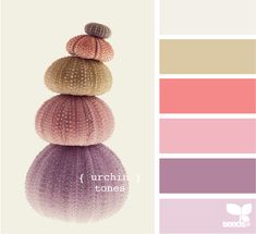 urchin tones, from Design Seeds - color palette Colour Pallette, Colour Schemes, Color Patterns, Color Combos, Design Seeds, Palette Pastel, World Of Color, Color Swatches, Color Stories
