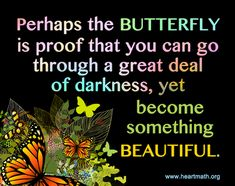 The Butterfly is Proof