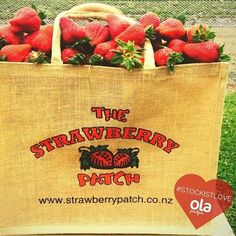 We love our stockists, so we thought we'd start sharing a bit of this love with our followers so you know where you can get your hands on our real cacao product! This week we thought we would start with someone nice and close to home The Strawberry Patch! Because really what could be better than strawberries and chocolate... ? The Strawberry Patch is located in Hawkes Bay on the outskirts of Havelock North, and is an iconic destination for strawberries (of course) and other awesome loc...