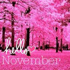Noviembre ❤️