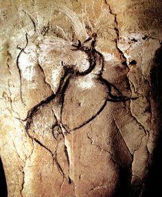 Cueva de Chauvet. Megaloceros: tipo extinto de alce gigante. Dibujado a carboncillo. Este animal, que desapareció hace más de 10.000 años, tenía astas impresionantes, a pesar de que no se representan aquí. Observe cómo se produjeron las diferentes actividades en este panel: pinturas negras, clawmarks, raspaduras y dibujos negros.