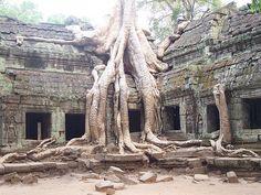Angkor                                                                                                                                                                                 Más