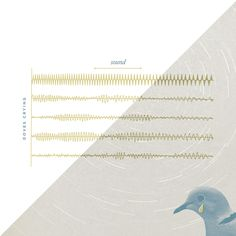 Katrina McHugh: 100 Days of Lyrical Natural Sciences. Classic Pop Songs, Reimagined as Infographics...