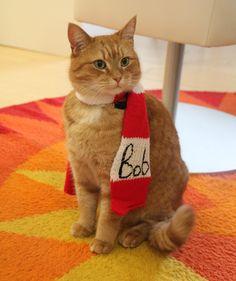 Bob mit seinem schicken Schal! © Bastei Lübbe