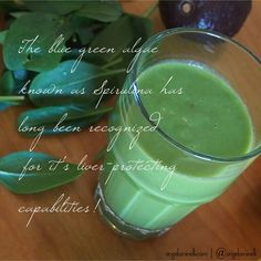 Spirulina is actually the HIGHEST FORM OF PROTEIN in earth, and is great in smoothies, in green drinks, to detox - even baking!  Click the link in the bio for more holistic living tips delivered straight to your inbox!