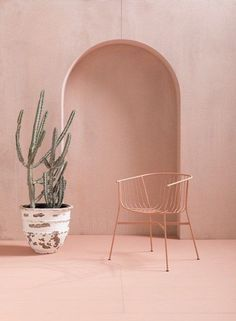 Living coral Pantone of  Chair design by Tom Dereday 📷 by by Designer Lucy Pinkney Cool Furniture, Furniture Design, Luxury Furniture, Furniture Ideas, Outdoor Furniture, Deco Rose, Live Coral, Spring Summer, Blog Deco