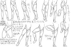 ✤ || CHARACTER DESIGN REFERENCES | キャラクターデザイン • Find more at https://www.facebook.com/CharacterDesignReferences if you're looking for: #lineart #art #character #design #animation #draw #tibia #reference #anatomy #fibula #artist #pose #gestures #how #to #tutorial #comics #conceptart #modelsheet #femur #legs #leg #heel #ankle #thigh #haunch #knees #quadriceps #calves #hamstrings || ✤