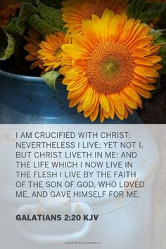 I am crucified with Christ: nevertheless I live; yet not I, but Christ liveth in me: and the life which I now live in the flesh I live by the faith of the Son of God, who loved me, and gave himself for me. - Galatians 2:20 KJV | Shasta made this with Spoken.ly