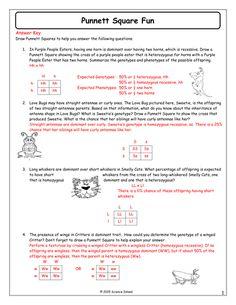 13-Punnett-Square-Fun-Answer-Key.docx