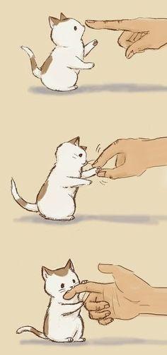 grafika cat, cute, and kawaii