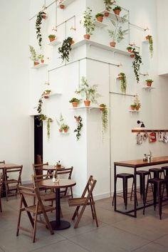 Wall with greens - Coole Wanddeko. Mehrere Grünpflanzen wurden an der Wand platziert und miteinander verbunden.