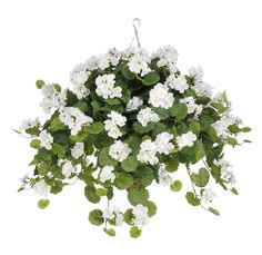 Artificial Geranium with Hanging Plant in Beehive Basket Flower Color: White *** Discover this special product, click the image (This is an amazon affiliate link. I may earn commission from it)