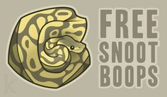 Free Snoot Boops by Karianne Hutchinson illustration vector illustrator Adobe art ball python snake cuddly pet cute snek boop snoot meme