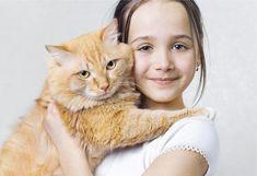 Top Ten Reasons to Hug your Cat