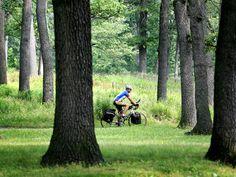 Bike rider in High Park