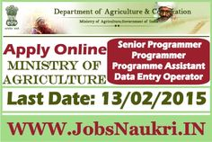 Ministry of Agriculture, food processing and co-operation : Programmer, Assistant, Data Entry Operator Last Date : 13/02/2015 Post Name :     Senior Programmer     Programmer     Programme Assistant     Data Entry Operator