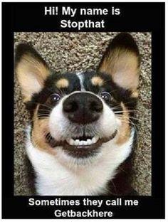 Funny Meme #Call, #Name