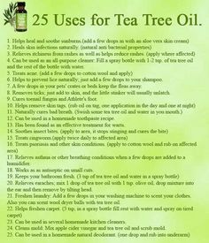 Tea Tree Oil...