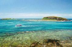 Abrolhos - Bahia - Brasil
