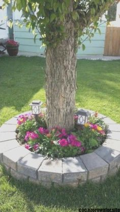 Cheap Landscaping Ideas For Front Yard, Outdoor Landscaping, Backyard Ideas, Mailbox Landscaping, Backyard Patio, Fence Ideas, Acreage Landscaping, Courtyard Landscaping, Landscaping Edging