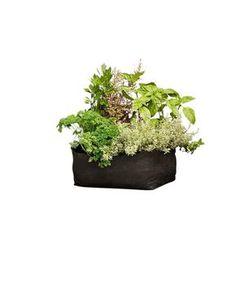 Herb Grow Bag, Black