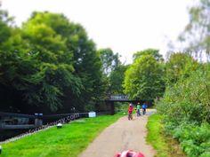 In bicicletta lungo i canali inglesi - Surrey - Woking