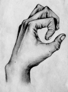 hand sketch in graphite