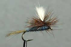 Which flies for trout have staked their claim as the best of the best? Fly Fishing Tips, Fishing Knots, Salmon Fishing, Trout Fishing, Best Trout Flies, Fly Tying Materials, Fly Tying Patterns, African Cichlids