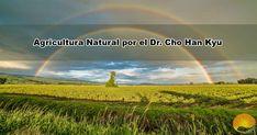 La agricultura natural del Dr. Cho (AN) son técnicas de cultivo totalmente naturales, investigadas y aplicadas por el Dr. Cho Han Kyu. Científico, investigador y observador de la vida natural. Vida Natural, Farming, Natural Farming, Backyard Chickens, Naturaleza
