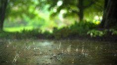 10 Hours Heavy Rainfall with Thunder Ambient Sleep Sounds la lluvia del sueño tormenta Thunderstorm - YouTube