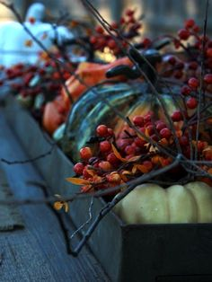 gourds and berries window box