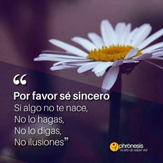 Funny Motivation, Spanish Quotes, Illustrations And Posters, Great Quotes, Reiki, Beautiful Pictures, Mindfulness, Good Things, Messages
