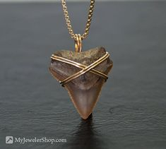 Wire Wrapped Shark Tooth Pendant Gold Filled by sketchystories