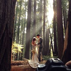 I feel like I'm in a Ferngully movie right now! Every photo and shot is just magical. Congrats to the new couple :) - Everly Films - www.everlyfilms.com
