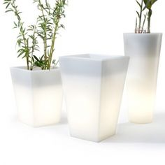 Lighted planters