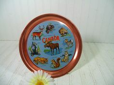 Vintage Wild Animals of Canada Souvenir LightWeight Metal Tray - Retro Round Copper Color Tin Plate - 9 Litho Pics of Colorful Characters by DivineOrders on Etsy