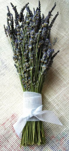 Dried Lavender Bouquet with Hand Tied White Cotton Bow. $7.50, via Etsy.